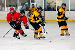 20071229_Bruins_vs_GoldenEagles_01.jpg