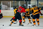 20071229_Bruins_vs_GoldenEagles_03.jpg