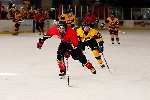 20071229_Bruins_vs_GoldenEagles_04.jpg