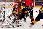 20071229_Bruins_vs_GoldenEagles_10.jpg