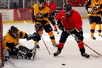 20071229_Bruins_vs_GoldenEagles_13.jpg