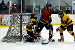20071229_Bruins_vs_GoldenEagles_26.jpg