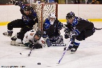 20090123_Maulers_RoughRiders-19.jpg