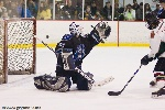 20090123_Maulers_RoughRiders-29.jpg