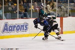 20090123_Maulers_RoughRiders-41.jpg