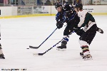 20090123_Maulers_RoughRiders-44.jpg