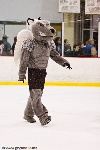 20090206_Maulers_RoughRiders-53.jpg
