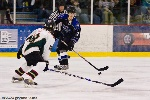 20090206_Maulers_RoughRiders-67.jpg
