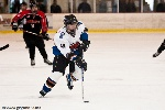 20090307_Missoula_Billings-25.jpg