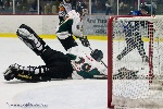 20110128_Maulers_Roughriders-24.jpg