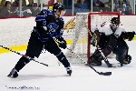 20110128_Maulers_Roughriders-44.jpg